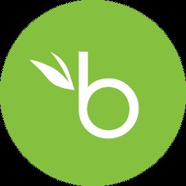 BambooHR SAML